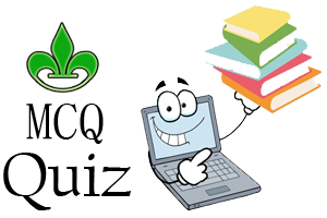 Online MCQ Quiz for Fundamentals of Computers