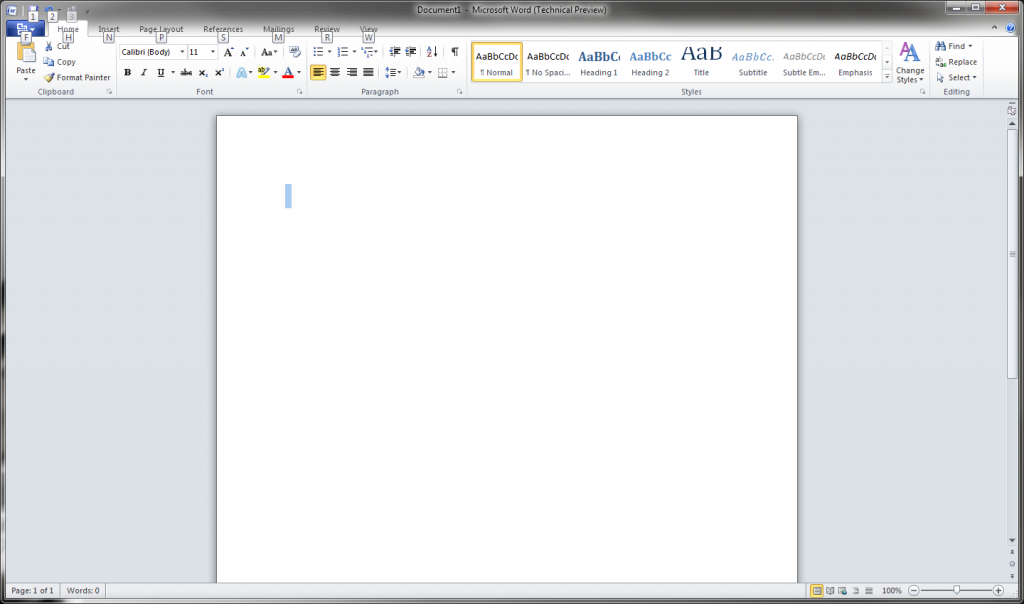 MS Word 2010 Screen