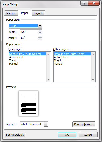 Paper Tab in Page Setup Dialog Box