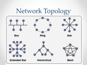 What are the different types of topology used for networking?