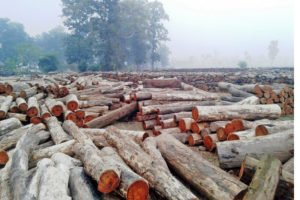 Solved Question Paper of The Timber Corporation Assistant Computer Operator 2074